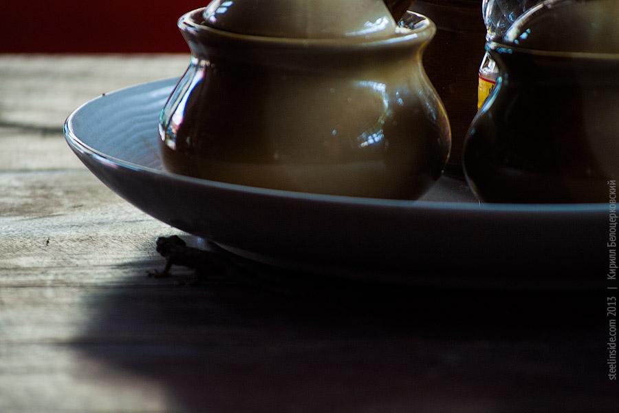 Геккон на столе в Чианг Мае